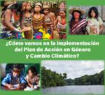 Como vamos en la implementación del Plan de acción en género y cambio climático?